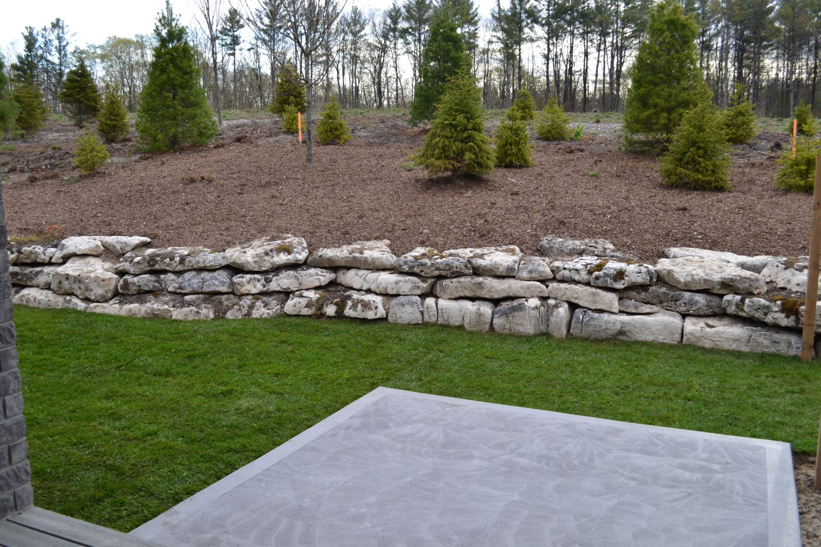 stone and evergreen landscaping